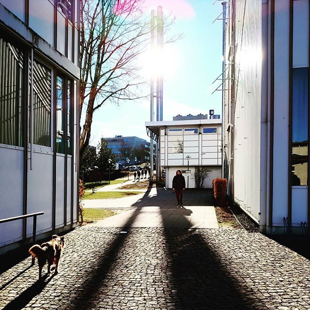 Lange Schatten in der Fachhochschule Kempten.