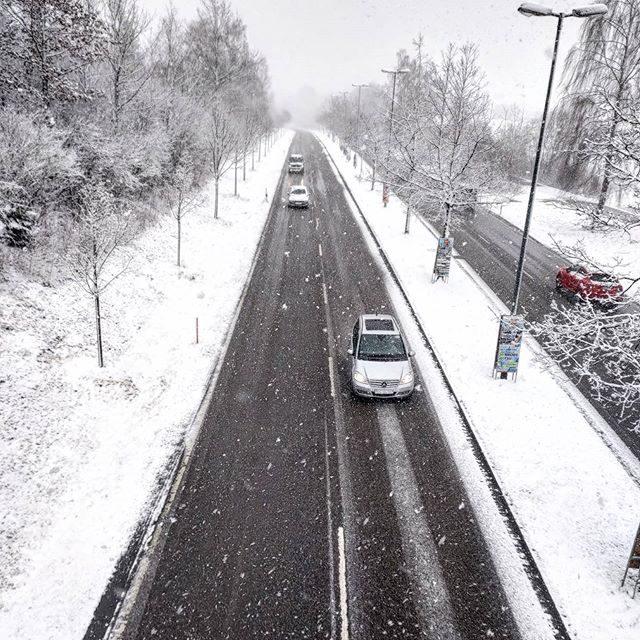 Schneefall auf dem Heussring.