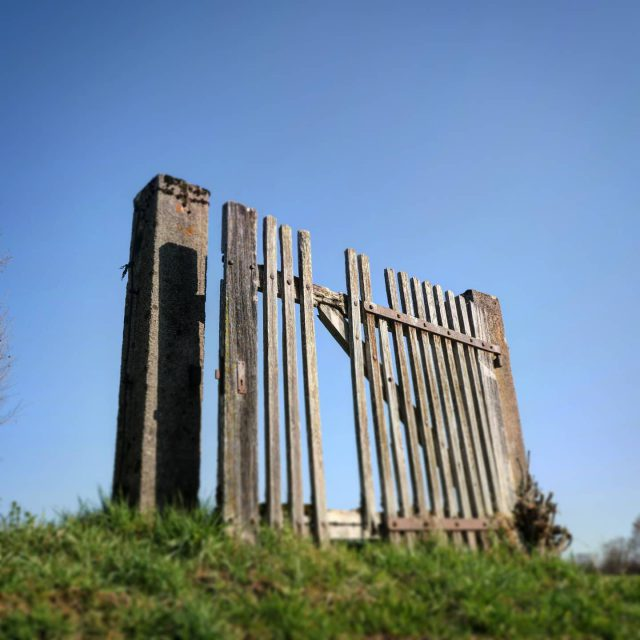Verschlossenes Gartentor in Kempten Bucharchts. - unüberwindbar, tür, tor, noentry, kempten, gartentür, gartentor, einbruchsicher, abgeschlossen