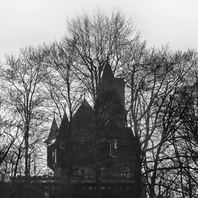 Burghalde hinter Bäumen.