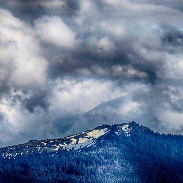 Licht und Schnee auf dem Wertacher Hörnle.