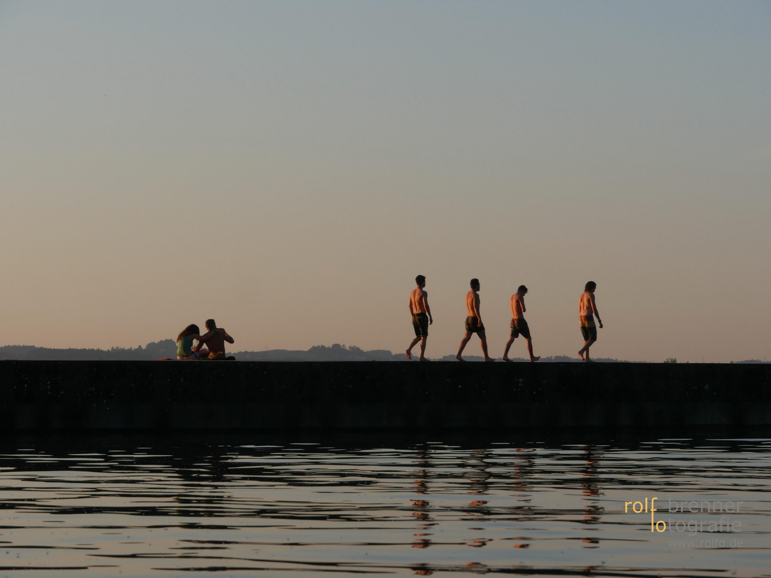 Evolution am Bodensee